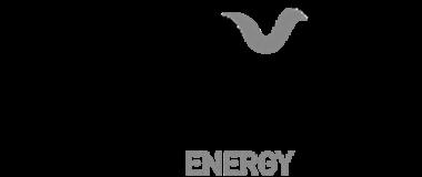 Partner - genesis energy